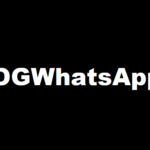 OGWhatsApp Download v 8.39 Latest Version of OG WhatsApp